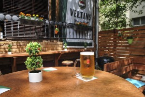 The Green Garden Pub_007